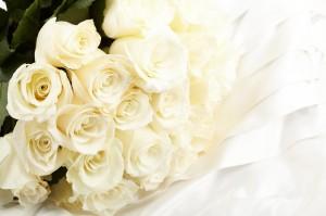 FreeGreatPicture.com-31203-roses